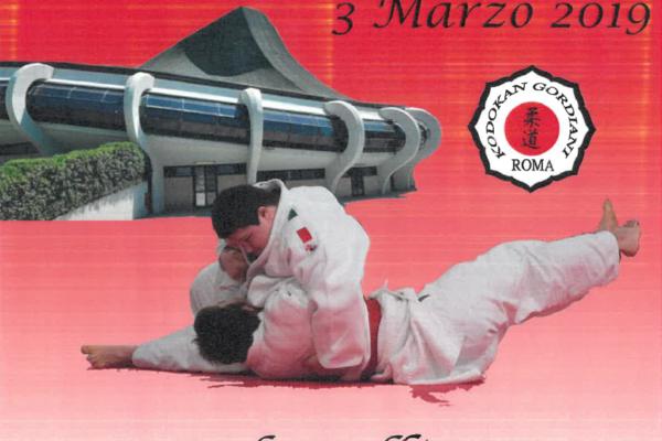 XI Campionato Italiano di Judo